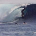 surf_safari_floripa_surf_club-2