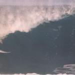 surf safari floripa surf club